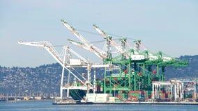 奥克兰港的本纳特终端  库存图片