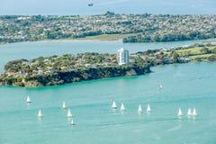 奥克兰,新的西兰2013年12月12日 与sai的海景视图 免版税库存照片