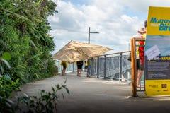 奥克兰,新西兰- 2018年4月07日:观众和竞争者在Murrays海湾码头Birdman节日 免版税图库摄影