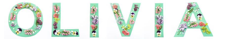 奥利维亚词由纸和春天花制成 库存照片