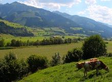 奥地利威胁横向 免版税库存照片