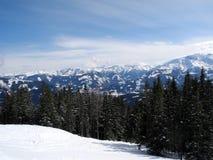奥地利山-冬天风景 免版税图库摄影