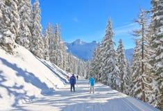 奥地利手段schladming滑雪 奥地利 图库摄影