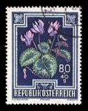 奥地利打印的邮票,展示野生紫罗兰 库存照片