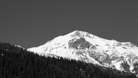 奥地利的阿尔卑斯 免版税图库摄影