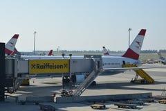 奥地利航空与小翅膀的波音767-300er在维也纳机场的门 免版税库存照片