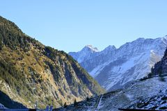 奥地利,提洛尔,自然 免版税图库摄影