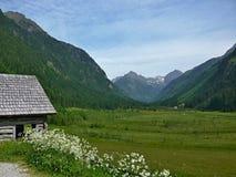 奥地利,阿尔卑斯谷Untertal 库存图片