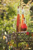 奥地利, Salzburger土地,在瓶的草本精华在桌上在庭院里 免版税库存照片