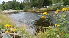 奥塔瓦河河,捷克 免版税库存照片