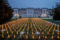 奥多Wagner医院在维也纳,奥地利 图库摄影