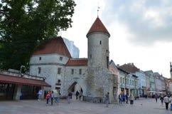 奥尔德敦的片段-塔林的古老部分,爱沙尼亚的首都 免版税库存照片