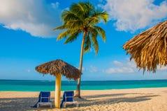 奥尔金,古巴, Playa埃斯梅拉达 伞和两张躺椅在棕榈树附近 在加勒比海的热带海滩 天堂la 库存照片
