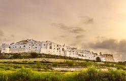 奥斯图尼,与城市 镇墙壁:瓦尔d'Itria的全景 免版税库存照片