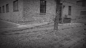 奥斯威辛比克瑙奥斯威辛-波兰的博物馆 影视素材