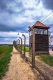 奥斯威辛集中营,波兰的受害者照片  免版税库存图片