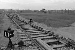 奥斯威辛,波兰, 2013年10月12日:铁路路轨在集中营的在奥斯威辛比克瑙KZ,黑白 免版税库存照片