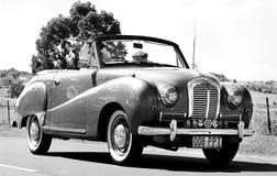 1951年奥斯汀A30敞篷车机动车在游行Kalbar国家天 库存照片