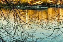 奥斯陆-海湾、小船、蓝色波浪、金黄日落和分支 库存照片