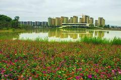 奥林匹克公园的秀丽 图库摄影