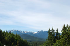 奥林匹克国家公园风景视图  免版税库存图片