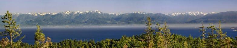奥林匹克山的全景, WA 免版税库存照片