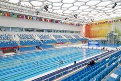 奥林匹克池游泳 免版税图库摄影
