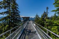 奥林匹克跳高滑雪风景-温哥华,加拿大 免版税图库摄影