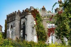 奥法利郡,爱尔兰- 2017年8月23日:比尔城堡在奥法利郡,爱尔兰 免版税图库摄影