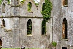 奥法利郡,爱尔兰- 2017年8月23日:飞跃城堡是其中一座被困扰的城堡在爱尔兰 库存图片