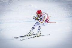 奥迪12月28日2017年-博尔米奥意大利- FIS滑雪世界杯 图库摄影