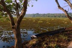 奥里萨邦Kanjia湖  库存照片