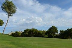 奥里韦拉肋前缘的高尔夫球场 免版税库存照片