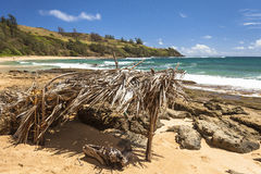 奥阿胡岛夏威夷海滩小屋 免版税库存照片