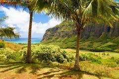 奥阿胡岛夏威夷& x22; Ka& x27; a& x27; awa谷& x22; 图库摄影