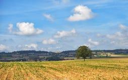 奥韦涅地区在法国的中央高原 库存图片