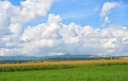 奥韦涅地区在法国的法国中央高原 库存图片