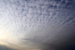 女低音在蓝色夏天天空的积云 库存照片