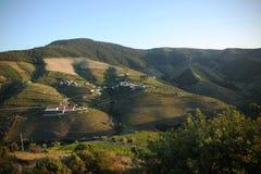 女低音杜罗河,葡萄牙美好的国家风景  库存图片