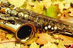 女低音萨克斯管在秋天公园 免版税库存图片