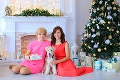 女儿和母亲微笑,在狗旁边坐在stu的地板 免版税图库摄影