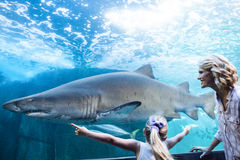 女儿措施一个鲨鱼用她的手 图库摄影