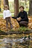 女儿鸭子喂养在池塘的母亲 免版税库存图片