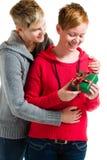 女同性恋的夫妇 免版税图库摄影