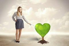 女商人浇灌的心形的绿色树 免版税图库摄影