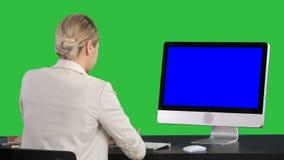 女商人研究她的在一个绿色屏幕上的计算机的,色度钥匙 蓝色屏幕大模型显示 股票录像
