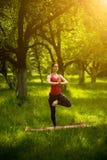 女子实践的瑜伽平衡asana 库存图片