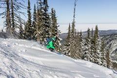 女子滑雪者通过粉末雪乘坐对山 冬季体育freeride 免版税库存照片