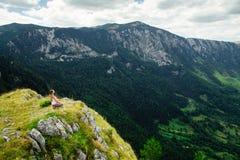 女子瑜伽放松在引人入胜的风景的地球结束时 免版税库存图片