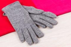 女子般地的手套和披肩作为衣裳为秋天或冬天,温暖的服装概念 免版税库存图片